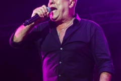 Cold Chisel - 178