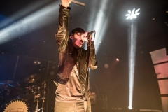 Grinspoon for Reverb 31 August 2017-14-2