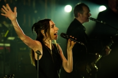 PJ Harvey (10 of 10)